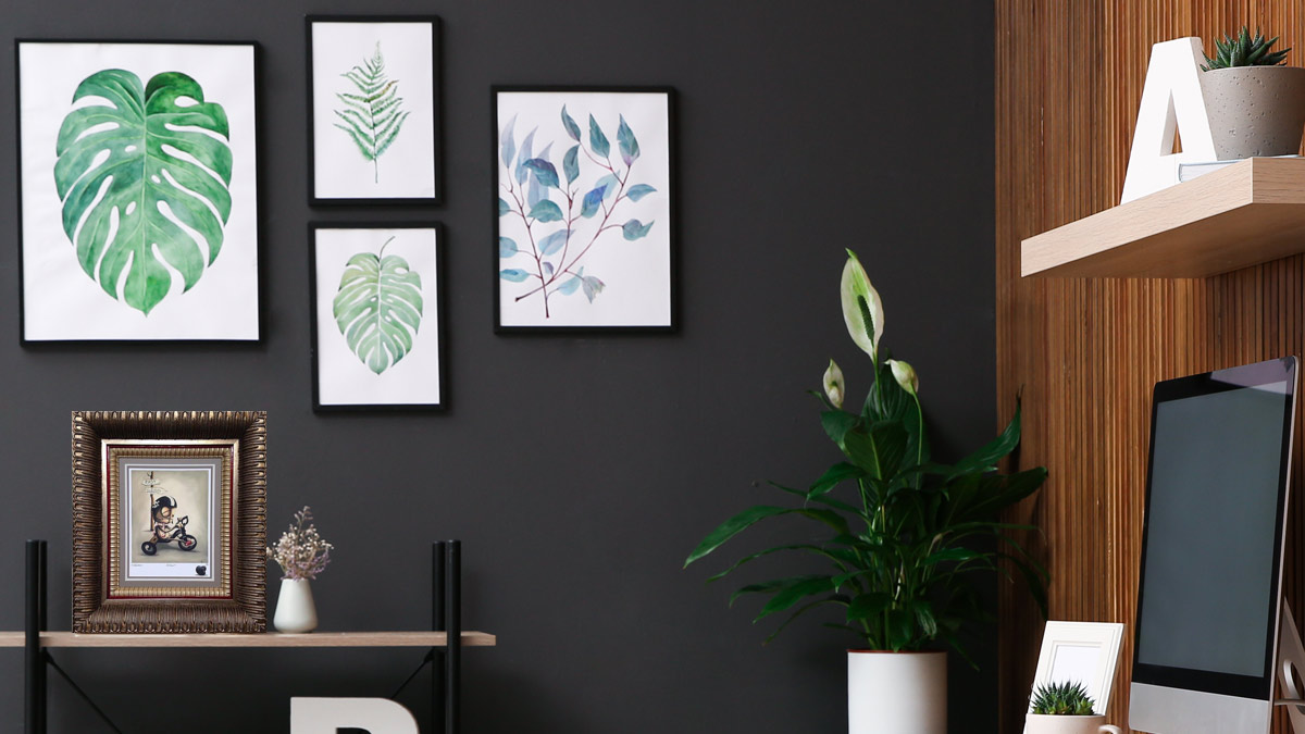 High-Quality Finishes for Commercial Picture Framing